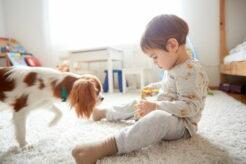 柄子供部屋のカーテンを選ぶには?機能やカラー、デザインはどうする?