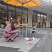 ペットと一緒に楽しみたい♪愛犬におすすめの関東のアウトレット12選