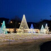 軽井沢は特別なデートにぴったり!都内から1時間で行けるおすすめデート