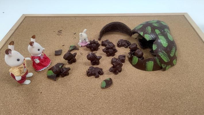 恐竜のタマゴ_シルバニアファミリー2