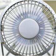 サーキュレーターと扇風機の違いを解説!どちらを購入すればよい?