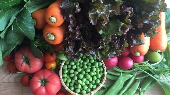野菜 宅食