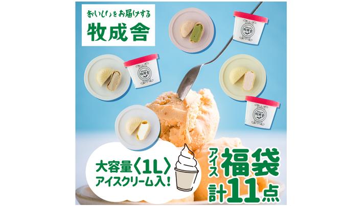 飛騨のミルクの旨味たっぷりアイスクリーム福袋セット