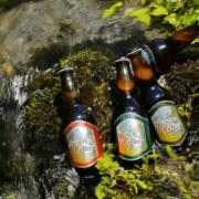 鳥取のクラフトビール「大山Gビール ペールエール」を紹介!柑橘系のフルーティな香りと優しい味わいが特徴